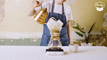 brew guides chemex video