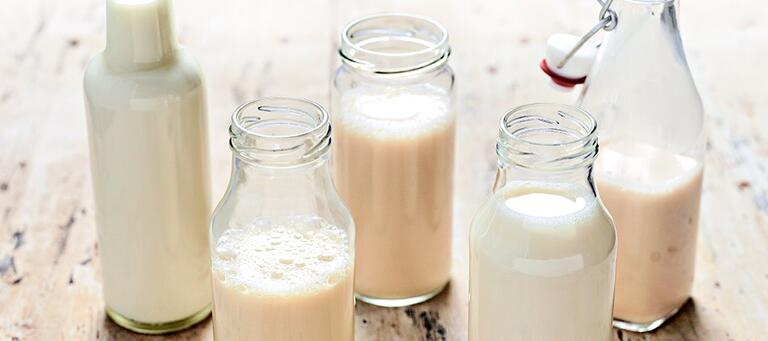 Coffee Guide Dairy-free Milk