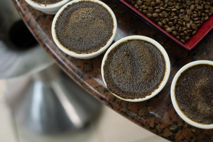coffee cupping in uganda