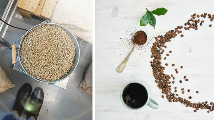 Coffee Roasting Basics: Developing Flavour by Roasting
